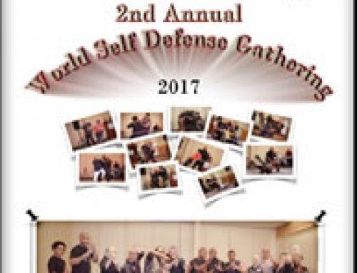 World Self Defense Gathering 2017